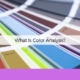 what is color analysis anksimage